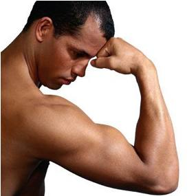 Otot Dalam
